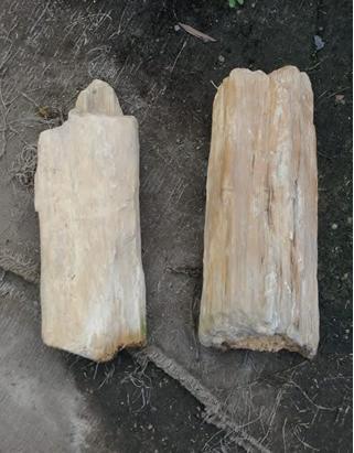piedra palo mediana