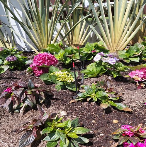 riego jardines exteriores